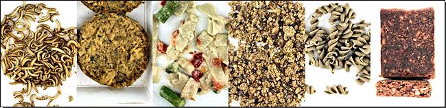 Abb. 3: Bisher am CVUA Freiburg untersuche Speiseinsektenproduktgruppen (von links nach rechts): ganze Insekten, Burger Patties, Fertiggerichte, Granola, Nudeln, Riegel