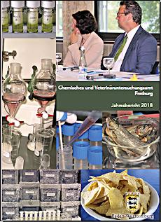Die Broschüre zum Jahresbericht 2017